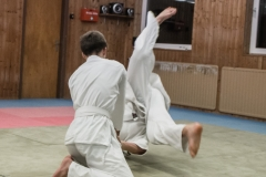 aikido-5219