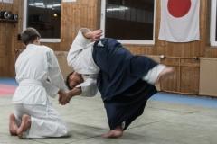 aikido-5241