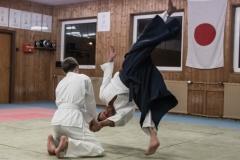 aikido-5242