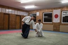 aikido-5250