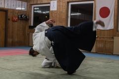 aikido-5256