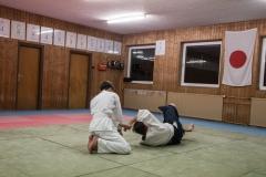 aikido-5270