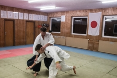aikido-5346