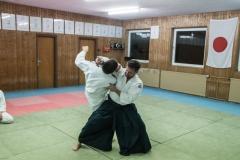 aikido-5352
